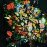 Reflexii de flori
