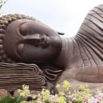 Yoga Visului – perspectiva tibetană