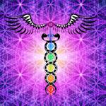 8 semne ale trezirii energiei Kundalini